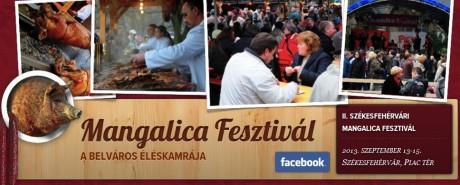 II. Székesfehérvári Mangalica Fesztivál