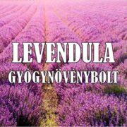 Levendula Gyógynövénybolt – Velence, Velencei-tó